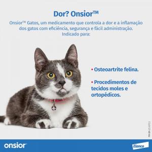 Brinquedo Interativo Kibble Nibble para Cães