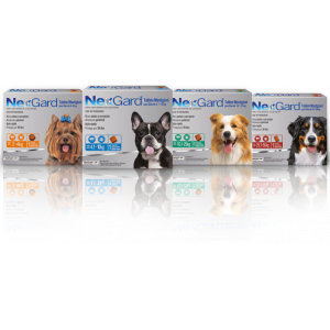 NexGard - para cães de 2kg a 50kg (1 tablete mastigável)