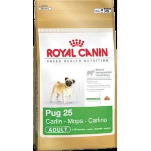 Royal Pug - 7,5kg