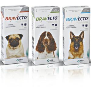 Bravecto - 1 comprimido