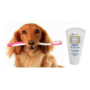 Gel Dental Anti Placas HigiCare Dent - 50g