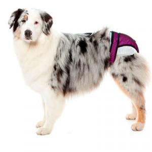 Protetor Higiênico para Fraldas & Cio  Pet Med - Rosa