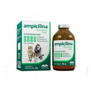 Ampicilina Veterinária Oral 50g