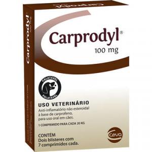 Carprodyl 100mg - 14 comprimidos