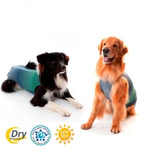 Roupa Pós Castração Pet Med Ultralight Color para Cães - Azul e Verde