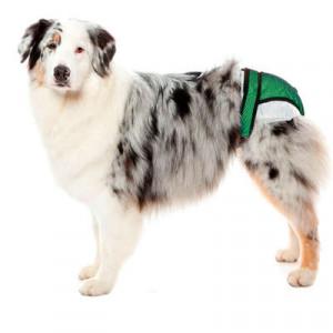 Protetor Higiênico Fraldas & Cio Pet Med para Cães - Verde
